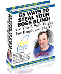 55 Ways To Steal Your Boss Blind